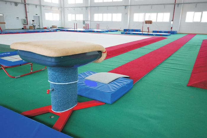 FOR SALE: Tons of Gymnastics Equipment For Sale