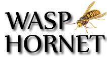 SERVICES: GET RID OF WASPS INSTANTLY