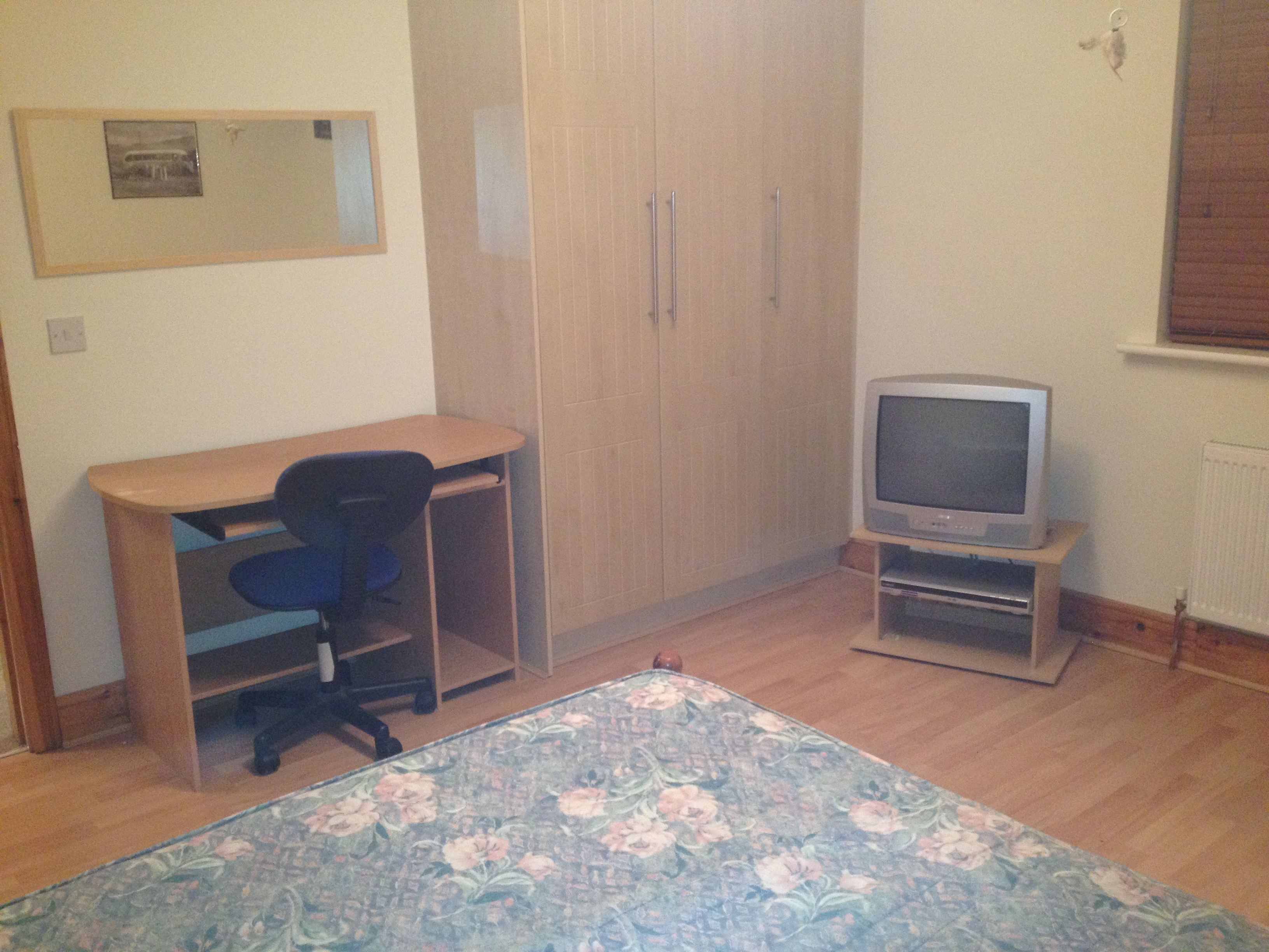ROOM TO LET: 1 Large Double Bedroom in Adamstown, Lucan