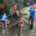 OFFERED:  Democratic Learning New Zealand Forest School