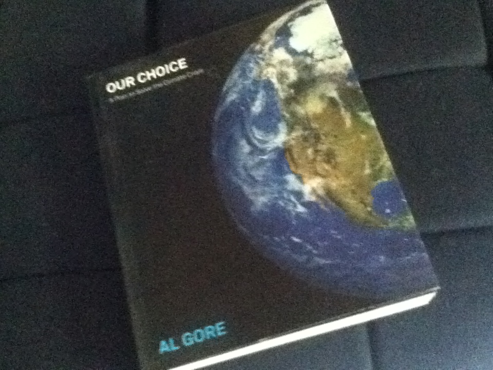 FOR SALE: Al gore - our choice a book on climate change