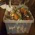 FOR SALE: bundle of toy animals and insects