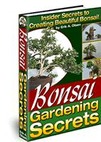 FOR SALE: Discover Step-by-Step Secrets Create Stunning Bonsai